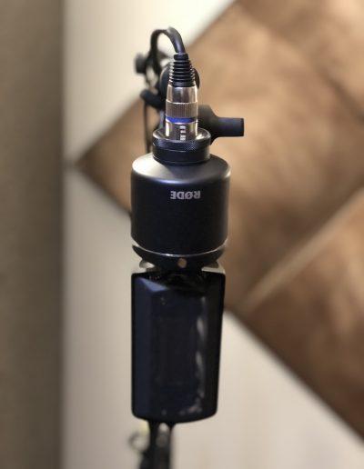 NTR Ribbon Microphone